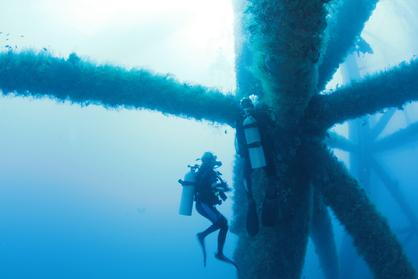 Underwater Photography And Inspections